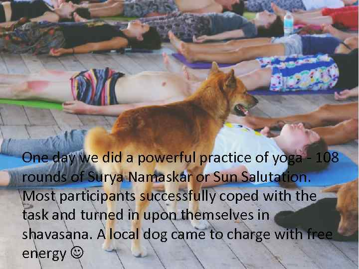 One day we did a powerful practice of yoga - 108 rounds of Surya