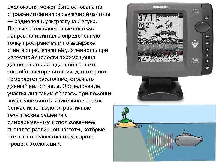 Эхолокация может быть основана на отражении сигналов различной частоты — радиоволн, ультразвука и звука.
