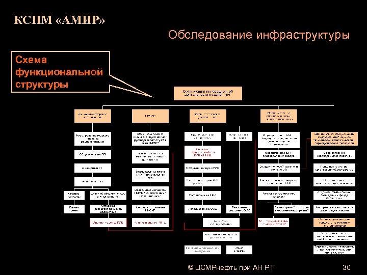 КСПМ «АМИР» Обследование инфраструктуры Схема функциональной структуры © ЦСМРнефть при АН РТ 30