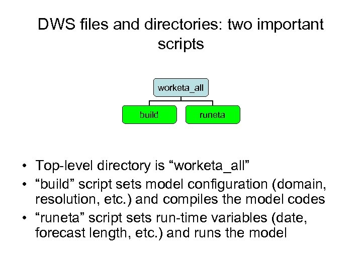 DWS files and directories: two important scripts worketa_all build runeta • Top-level directory is