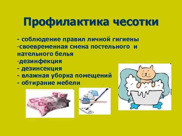 Профилактика чесотки - соблюдение правил личной гигиены -своевременная смена постельного и нательного белья -дезинфекция