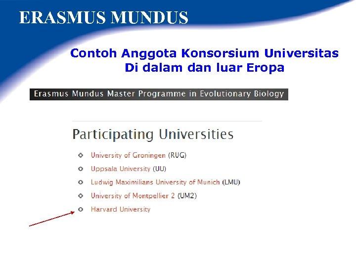 ERASMUS MUNDUS Contoh Anggota Konsorsium Universitas Di dalam dan luar Eropa