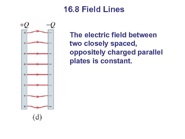 16. 8 Field Lines The electric field between two closely spaced, oppositely charged parallel