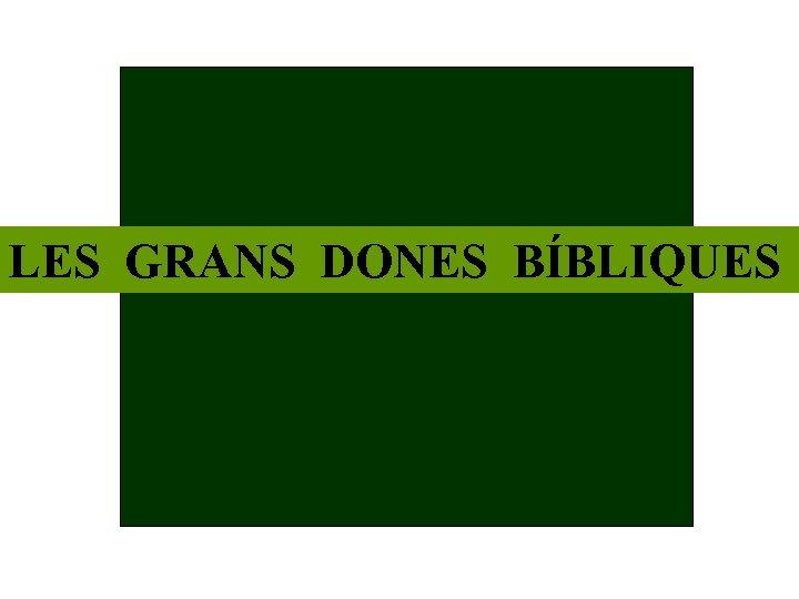 LES GRANS DONES BÍBLIQUES