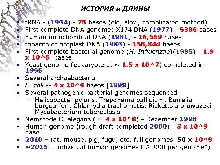 ИСТОРИЯ и ДЛИНЫ § § § § t. RNA - (1964) - 75 bases