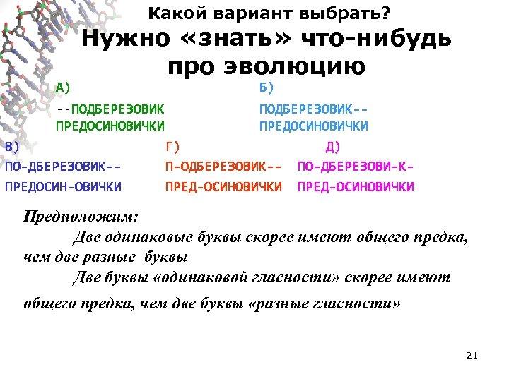 Какой вариант выбрать? А) Нужно «знать» что-нибудь про эволюцию --ПОДБЕРЕЗОВИК ПРЕДОСИНОВИЧКИ В) ПО-ДБЕРЕЗОВИК-ПРЕДОСИН-ОВИЧКИ Б)