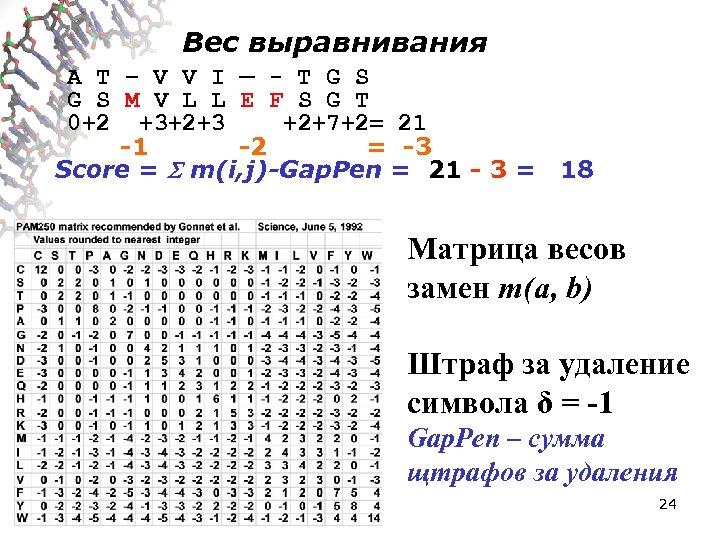 Вес выравнивания A T – V V I — - T G S M