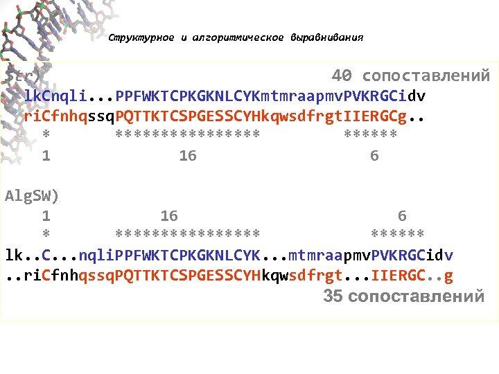 Структурное и алгоритмическое выравнивания Str) 40 сопоставлений lk. Cnqli. . . PPFWKTCPKGKNLCYKmtmraapmv. PVKRGCidv ri.