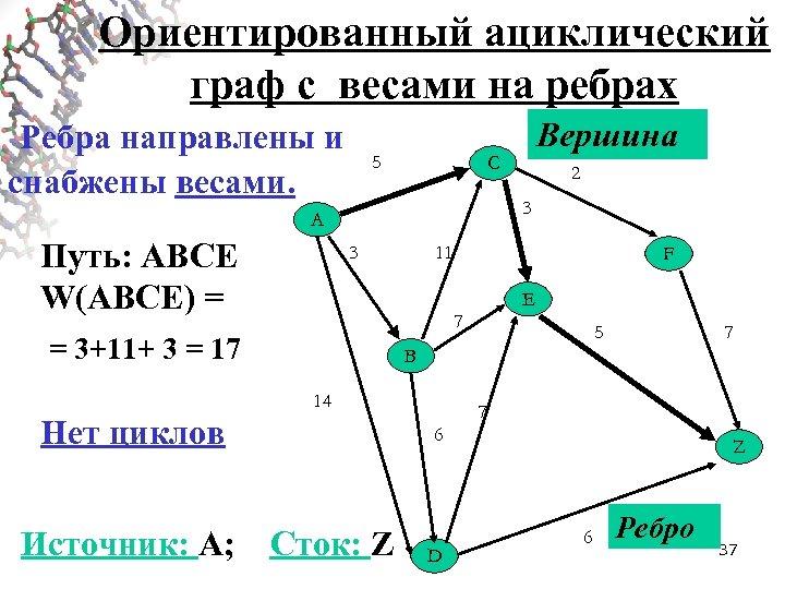 Ориентированный ациклический граф с весами на ребрах Ребра направлены и снабжены весами. 5 C