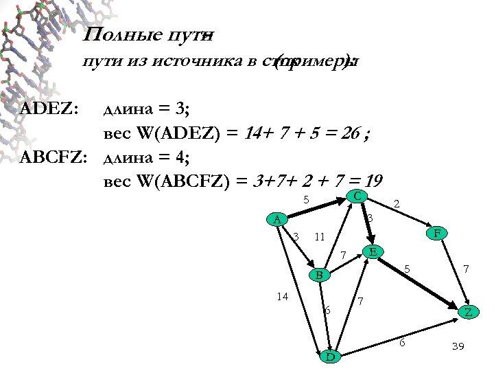 Полные пути – пути из источника в сток (примеры ): ADEZ: длина = 3;