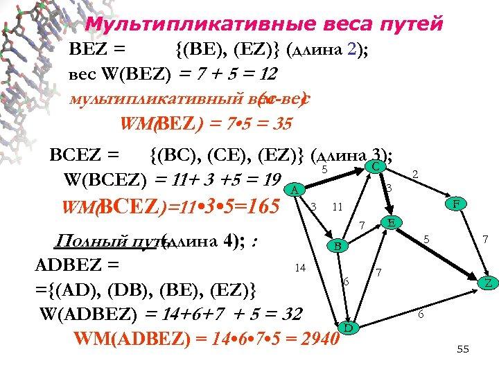 Мультипликативные веса путей BEZ = {(BE), (EZ)} (длина 2); вес W(BEZ) = 7 +