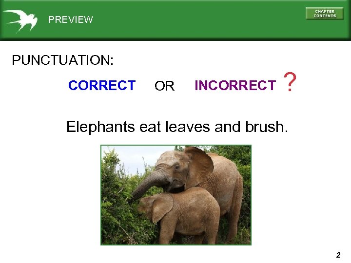 PREVIEW PUNCTUATION: CORRECT OR INCORRECT ? Elephants eat leaves and brush. 2