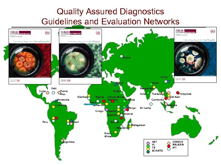 Quality Assured Diagnostics Guidelines and Evaluation Networks Haiti Cuba Puerto Rico Gambia Venezuela Russia