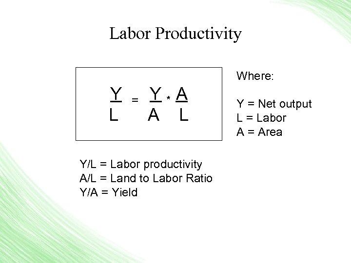 Labor Productivity Where: Y = Y * A L A L Y/L = Labor