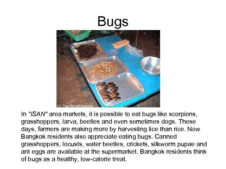 Bugs In