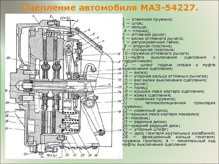 Сцепление автомобиля МАЗ-54227. 1 — отжимная пружина; 2 — шток; 3 — кольцо. 4