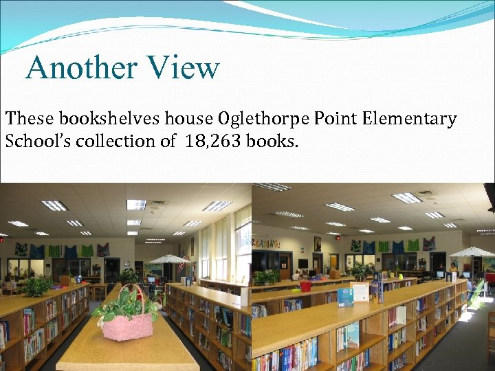 Another View These bookshelves house Oglethorpe Point Elementary School's collection of 18, 263 books.