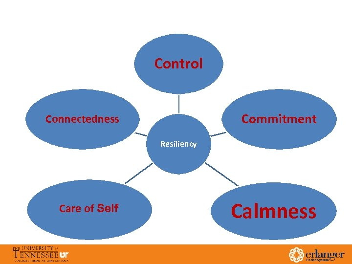Control Commitment Connectedness Resiliency Care of Self Calmness