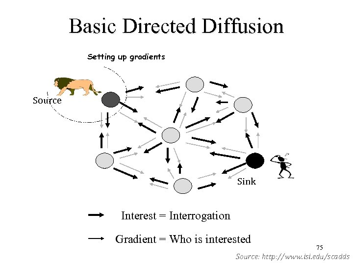Basic Directed Diffusion Setting up gradients Source Sink Interest = Interrogation Gradient = Who
