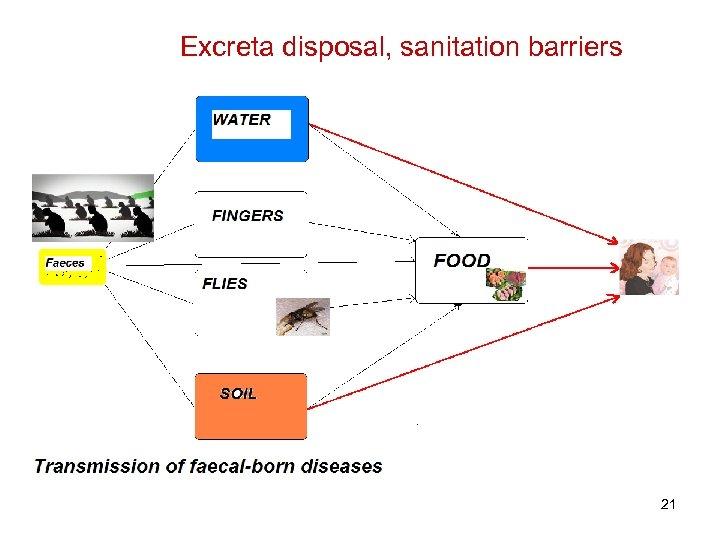 Excreta disposal, sanitation barriers 21
