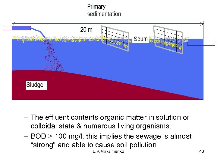 – The effluent contents organic matter in solution or colloidal state & numerous living