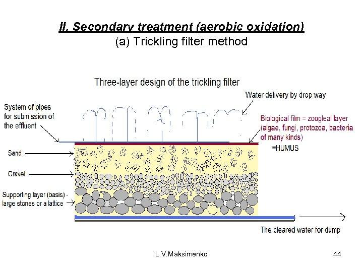 II. Secondary treatment (aerobic oxidation) (a) Trickling filter method L. V. Maksimenko 44
