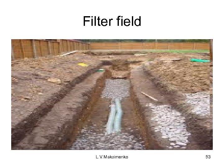 Filter field L. V. Maksimenko 53