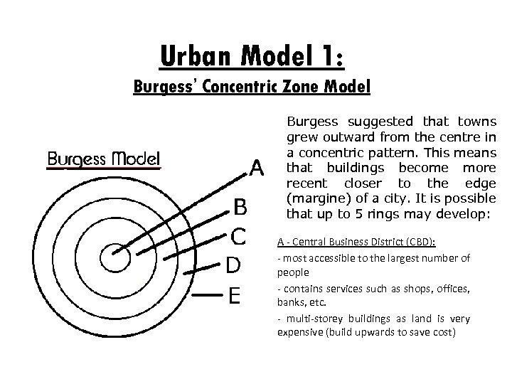 Urban Model 1: Burgess' Concentric Zone Model Burgess suggested that towns grew outward from
