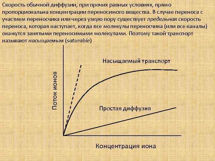 Скорость обычной диффузии, при прочих равных условиях, прямо пропорциональна концентрации переносимого вещества. В случае