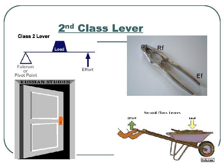 2 nd Class Lever Rf Ef