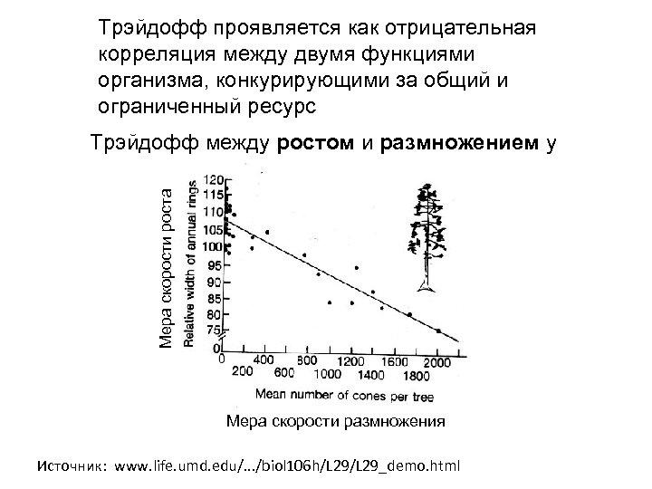 Трэйдофф проявляется как отрицательная корреляция между двумя функциями организма, конкурирующими за общий и ограниченный
