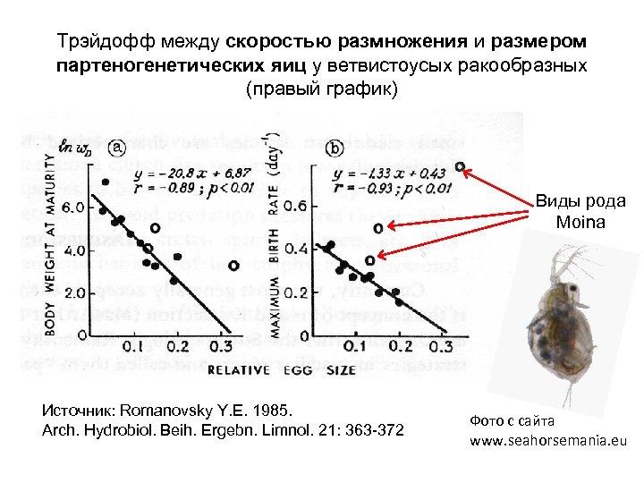 Трэйдофф между скоростью размножения и размером партеногенетических яиц у ветвистоусых ракообразных (правый график) Виды