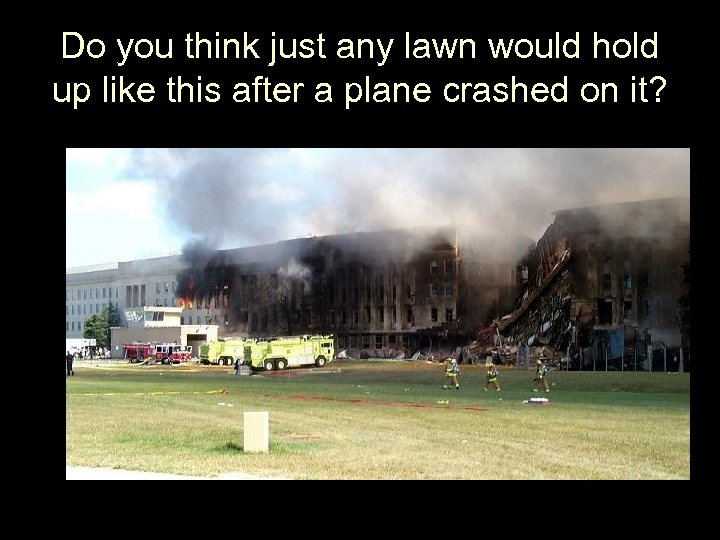 Do you think just any lawn would hold up like this after a plane