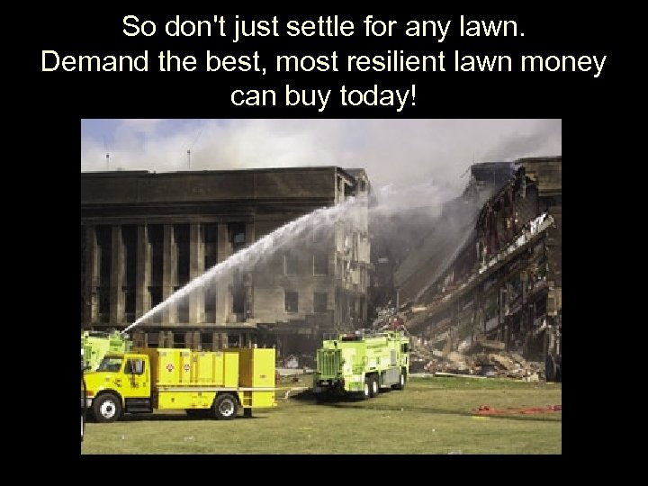 So don't just settle for any lawn. Demand the best, most resilient lawn