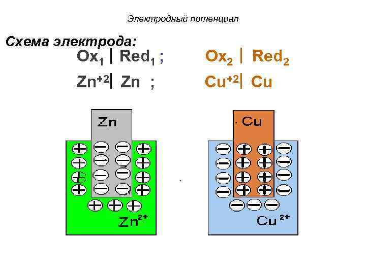 Электродный потенциал Схема электрода: Ox 1 Red 1 ; Zn+2 Zn ; Ox 2