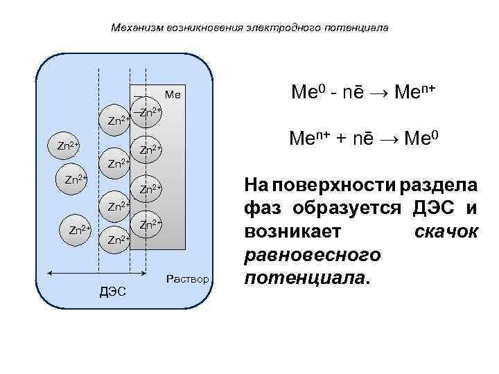 Механизм возникновения электродного потенциала Ме Zn 2+ Ме 0 - nē → Mеn+ Zn