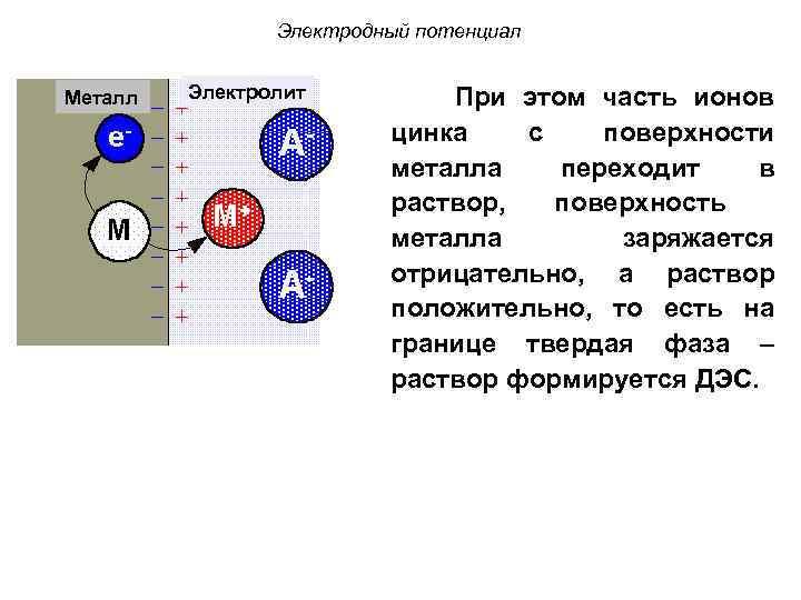 Электродный потенциал Металл Электролит При этом часть ионов цинка с поверхности металла переходит в