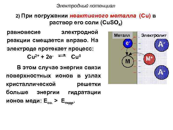 Электродный потенциал 2) При погружении неактивного металла (Cu) в раствор его соли (Cu. SO
