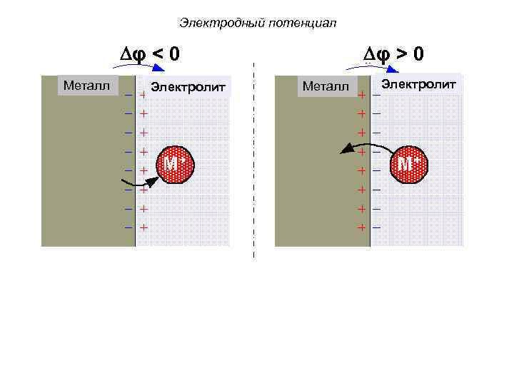 Электродный потенциал φ < 0 Металл Электролит φ > 0 Металл No current Электролит