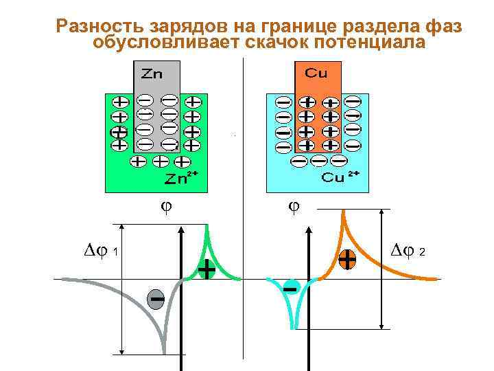 Разность зарядов на границе раздела фаз обусловливает скачок потенциала 1 2