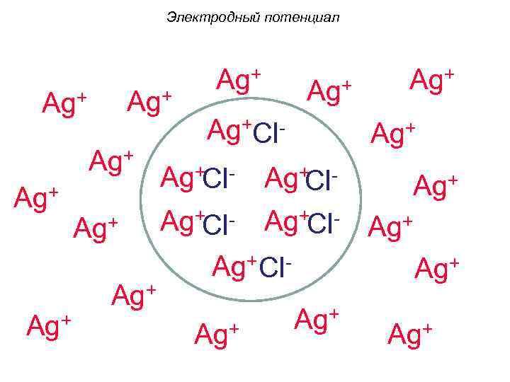 Электродный потенциал Ag+ Ag+ Ag+Cl- Ag+ Ag+ Ag+Cl- Ag+Cl. Ag+ Ag+