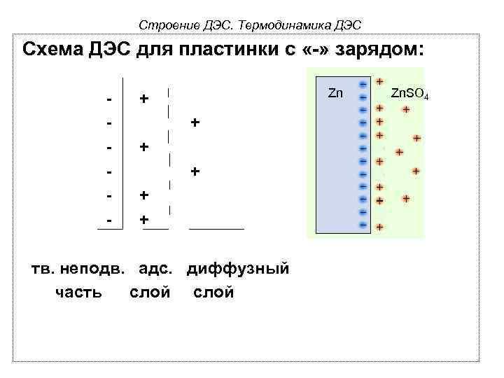 Строение ДЭС. Термодинамика ДЭС Схема ДЭС для пластинки с «-» зарядом: - Zn +