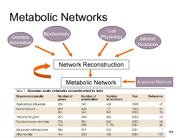 Metabolic Networks Genome Annotation Biochemistry Cell Physiology Inferred Reactions Network Reconstruction Metabolic Network Analytical