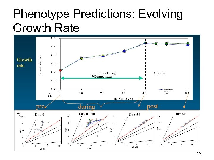 Phenotype Predictions: Evolving Growth Rate 15