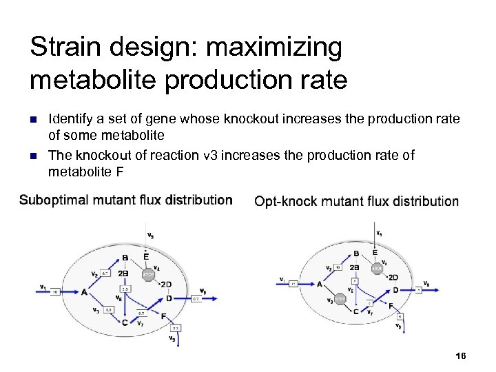Strain design: maximizing metabolite production rate n n Identify a set of gene whose