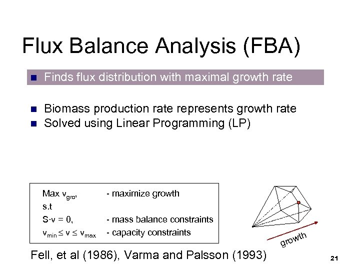 Flux Balance Analysis (FBA) n Finds flux distribution with maximal growth rate n Biomass
