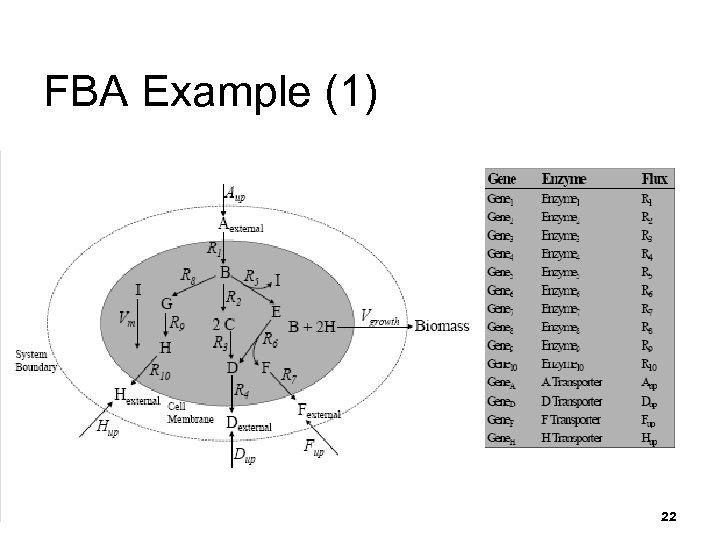 FBA Example (1) 22