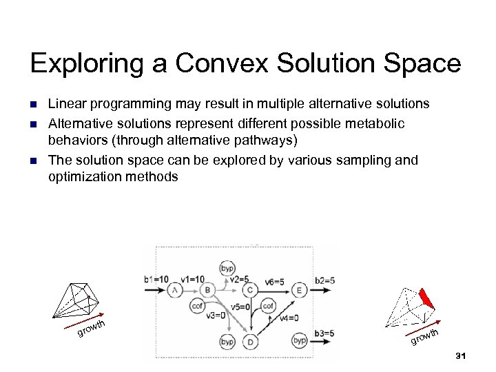 Exploring a Convex Solution Space n n n Linear programming may result in multiple