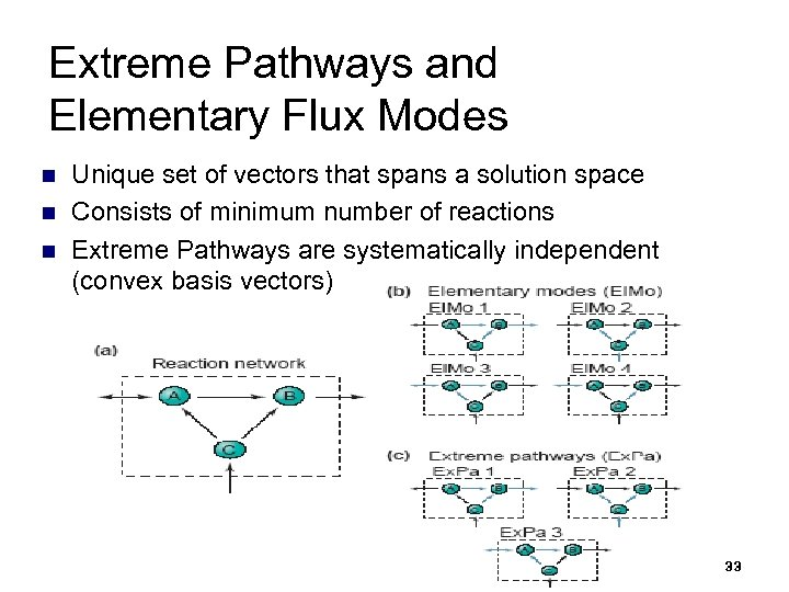 Extreme Pathways and Elementary Flux Modes n n n Unique set of vectors that