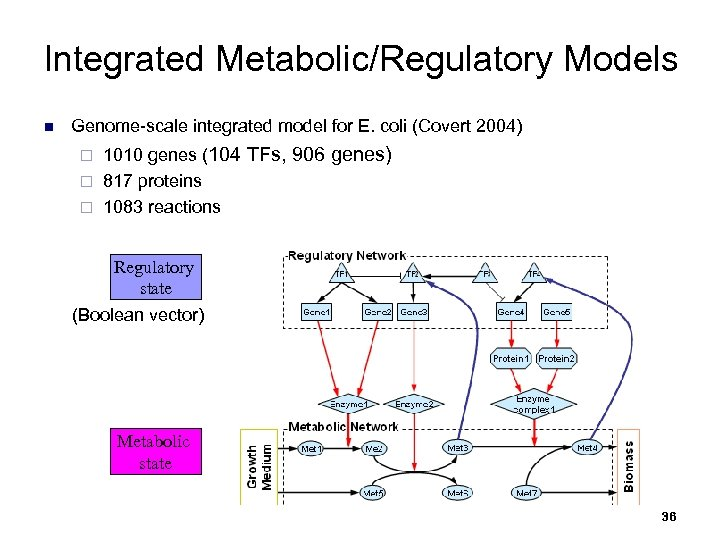 Integrated Metabolic/Regulatory Models n Genome-scale integrated model for E. coli (Covert 2004) 1010 genes